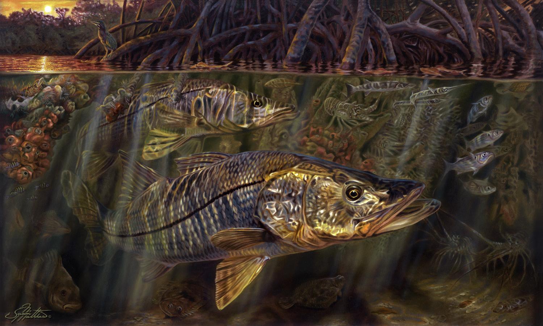 grove-garden-snook-art-painting-underwater-mangrove-scene-sunset-sunrise-jason-mathias-art-gamefish-sportfish-fishart-gift.jpg
