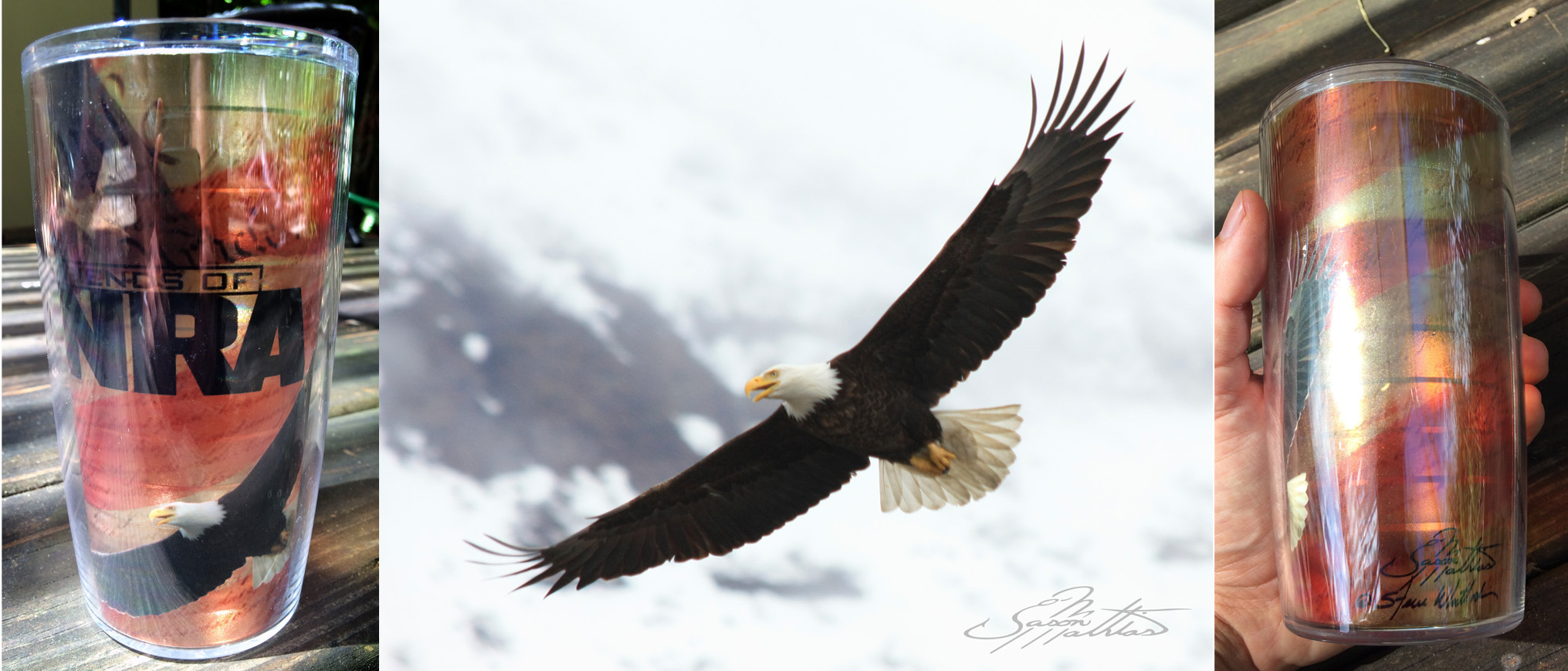 jason-mathias-eagle-photography-nra.jpg
