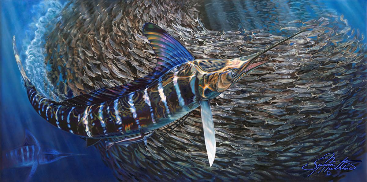 striped-marlin-baitball-art-jason-mathias.jpg